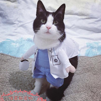 Funny Halloween pet cat dog doctor costume cosplay spring small medium dog puppy party jacket clothing dog clothes for Pitbull