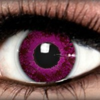 Calaview Azalea Violet - Calaview Azalea - Colored Contacts by ExtremeSFX