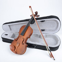 1/2 Rosewood Classical Violin Dark Golden with Case Bow Rosin