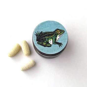 Frog Wooden Pill Box - Frog Tooth Fairy Box - Frog Wood Ring Box - Amphibian Box - Toad