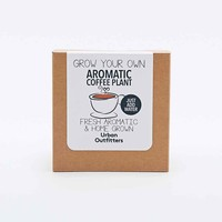 Urban Grow Aromatic Coffee Plant - Urban Outfitters