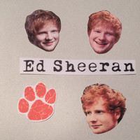 Set of Five Ed Sheeran Stickers