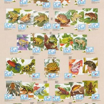 Frogs and Toads Amphibians Education Poster 27x39