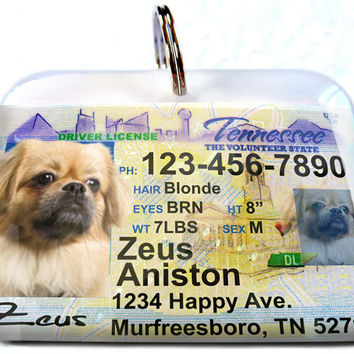 Tennessee driver license Personalized Custom ID Tags for dogs and cats Double Sided pet tags