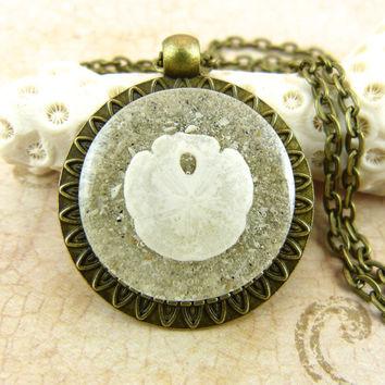 Sand Dollar Seashell Pendant Necklace with Sand and Shell from Sanibel Florida