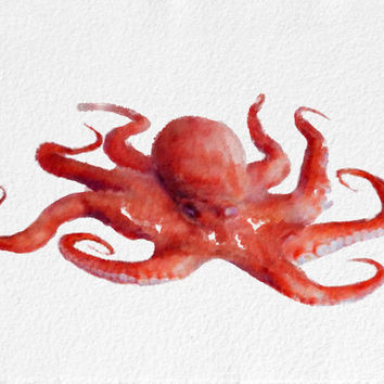 Octopus Watercolor Painting Art Print Sea Life watercolor red white pink Home Decor  Wall Decor Kitchen Decor Beach Decor