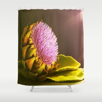 artichokes flower Shower Curtain by Tanja Riedel