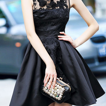 Black Sleeveless Sheer Mesh Lace Embroidered A-Line  Mini  Dress