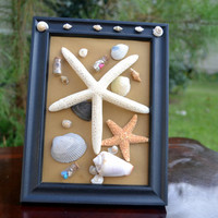 Beach Themed Frame, Wooden Framed Starfish With Seashells, 5x7 Frame with Beach Items