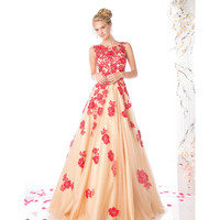 Red & Nude Sleeveless Tulle Long Gown 2016 Prom Dresses