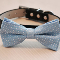 Light blue Dog bow tie- with high quality black leather collar, , Chic Dog Bow tie, Wedding accessories