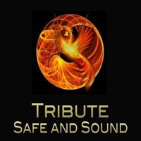 """Safe & Sound (Taylor Swift feat. The Civil Wars """"Hunger Games"""" Tribute) - Single"""