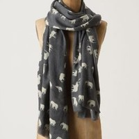 Elephant Salute Scarf-Anthropologie.com