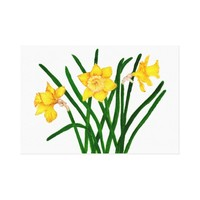 Daffodil Flowers Watercolour Painting Artwork Canvas Print