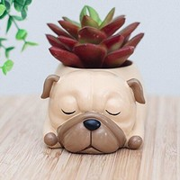 Dog Breed Succulent Planter Pots