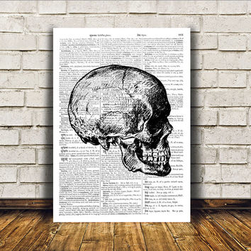 Anatomy art Human skull poster Dictionary print Modern decor RTA342