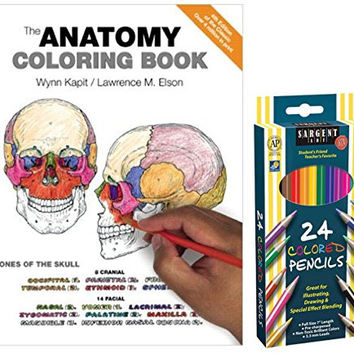 Sargent Art Colored Pencils, Set of 24 and The Anatomy Coloring Book by Wynn Kapit and Lawrence M. Elson Easy Anatomical Drawings to Color for Fun Studying & Stress Relieving Therapy!