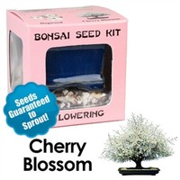 Cherry Blossom Bonsai Seed Kit | Eve's Garden Gifts