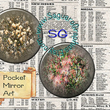 Beauty in the Desert II Art - Digital Collage Sheet - 2.625 inch Circles for Pocket Mirrors, Weddings, Party Favors, Arts & Crafts