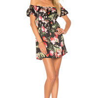 by the way. Paris Babydoll Mini Dress in Dark Floral