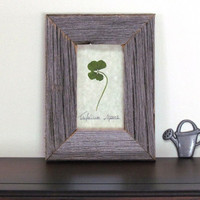 Four Leaf Clover in Rustic Reclaimed BarnBoard Frame