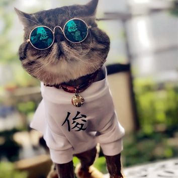 Funny Glasses For Puppies And Small Animals