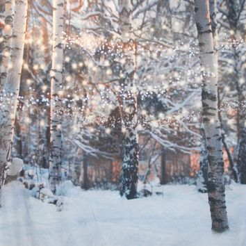 Snowy Trees With Glimmering String Lights Backdrop 7x8 - LCTCSL344 - LAST CALL