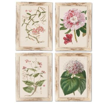 Petal Pink Botanical Framed Wall Art