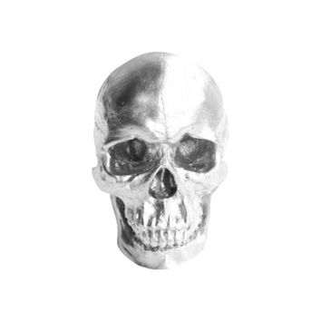 The Darwin | Faux Human Skull | Silver Resin