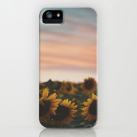 Oahu's Sunflowers iPhone & iPod Case by Tasha Marie