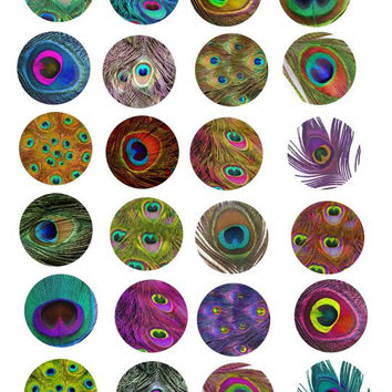 peacock feather patterns clip art collage sheet 1.5 inch circles