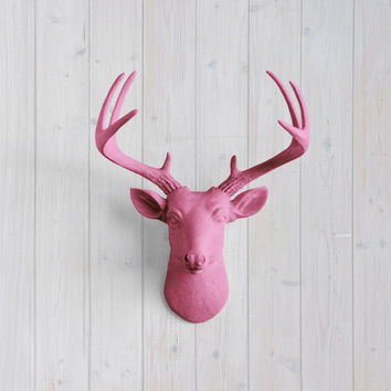 The MINI Virginia Fuchsia Faux Taxidermy Resin Deer Head Wall Mount | Fuchsia Stag w/ Colored Antlers