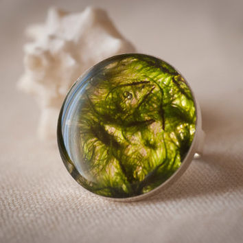 "Ring ""Elf"".  Adjustable ring, pressed forest moss by the resin, exquisite jewelry"