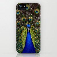 Vibrant pretty as a peacock bird feather art nouveau animal nature photograph iPhone & iPod Case by iGallery