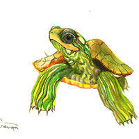 Turtle, Original watercolor painting, 14 x 11  in turtle lover art, turtle wall art, watercolor animals