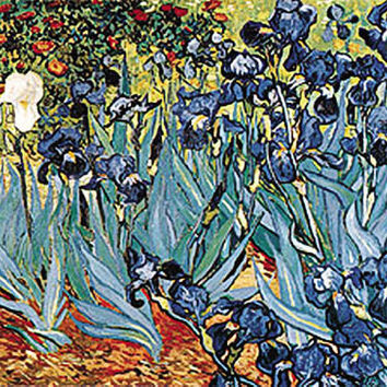 Irises Poster by Van Gogh