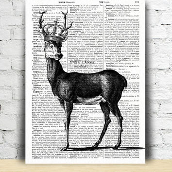 Dictionary art Buck decor Deer poster Stag print  TO6