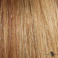 """16"""" Clip In Remy Hair Extensions: Light Brown and Golden Blonde P8/24"""