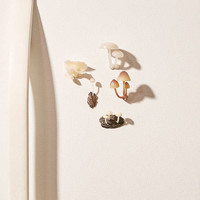 Assorted Glow-In-The-Dark Mushroom Magnet | Urban Outfitters
