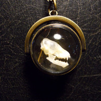 Bat Skull Ghost Orb Ossuary Sphere Bronze Magnifier Necklace