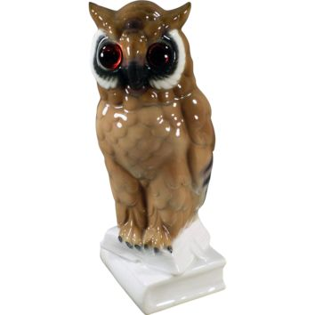 Large, Vintage Porcelain Owl Figurine with Glass Eyes - Gerold Porzellan Western Germany