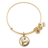 Pisces Charm Bracelet | Alex and Ani