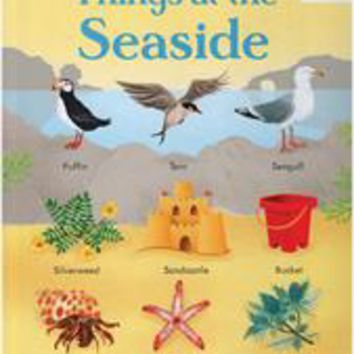 Usborne Books & More. 199 Things at the Seaside