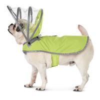 The Canine's Raincoat