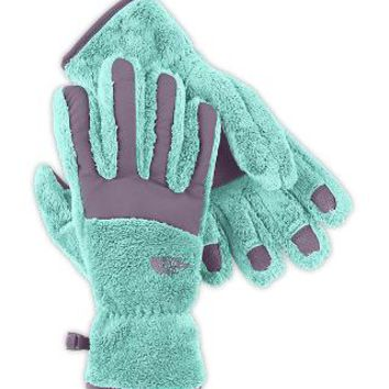 The North Face Women's Accessories WOMEN'S DENALI THERMAL GLOVE