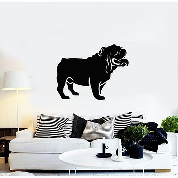 Vinyl Wall Decal English Bulldog Dog Pet Grooming Animal Friend Stickers Mural (g688)