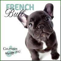 Favourite French Bulldog by Myrna 2012 Square 12x12 Calendar