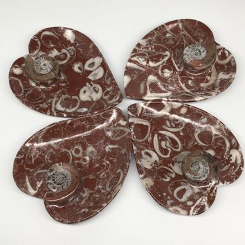 "4pcs,6.25""x5.2"" Ammonite Fossils Heart Plates Dishes Red Marble @Morocco,MF1395"