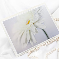 White herbera deisy folded photo note card.