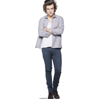 One Direction Harry Styles Cardboard Standup